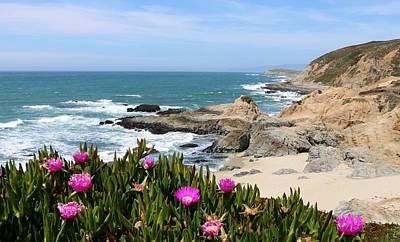 View From Bodega Head In Bodega Bay Ca - 3 Poster