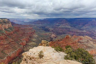 Poster featuring the photograph View From Yaki Point by Beverly Parks