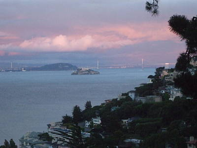 View Of Alcatraz From Our Sausalito Home Poster