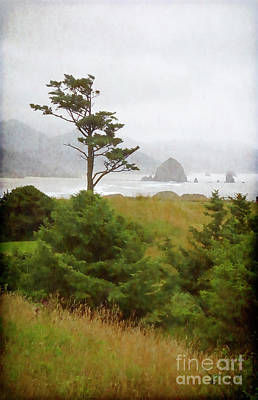 View Of Cannon Beach In The Fog Poster