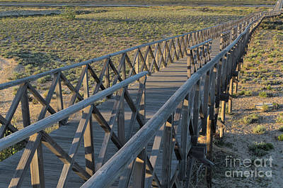 View Of The Wooden Bridge In Quinta Do Lago Poster