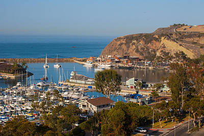 View Of West Basin Dana Point Harbor Poster by Cliff Wassmann