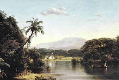 View On The Magdalena River Poster