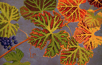 Vine Leaves And Ripened Grapes Poster by Philippe Robert