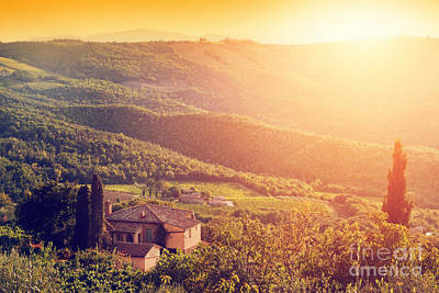Vineyard And Farm House, Villa In Tuscany, Italy At Sunset Poster