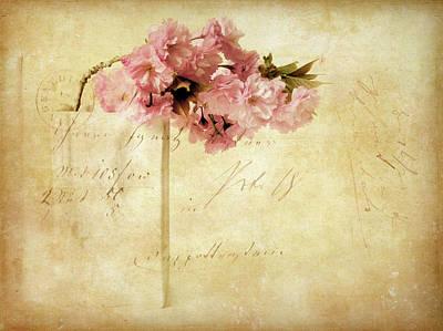 Vintage Cherry Poster by Jessica Jenney