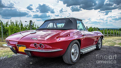 Vintage Corvette Sting Ray In Vineyard Poster by Edward Fielding