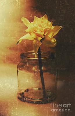 Vintage Daffodil Flower Art Poster