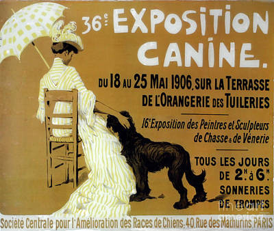 Vintage Dog Show Poster by Mindy Sommers