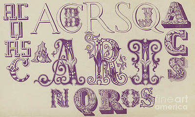 Vintage Fonts    Examples Of Letters  Poster