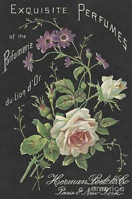 Vintage French Perfume  Poster