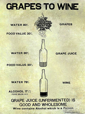 Vintage Grape To Wine Chart Poster by Jon Neidert