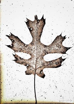 Vintage Leaf Poster
