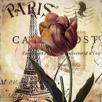 Vintage Paris Tulip Poster