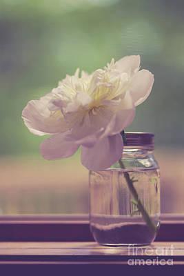 Vintage Peony Flower Still Life Poster
