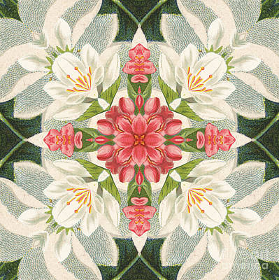 Vintage Pink And White Floral Pattern Poster