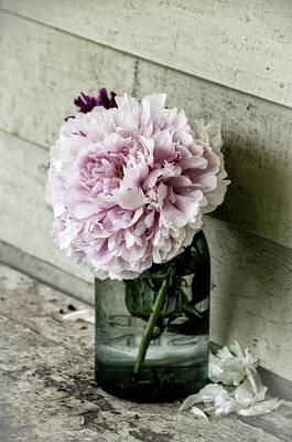 Vintage Pink Peony In Ball Jar Poster by Julie Palencia