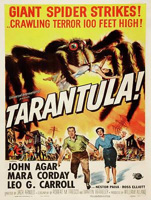 Vintage Poster - Tarantula Poster by Vintage Images