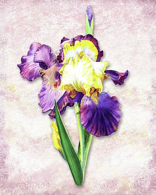 Poster featuring the painting Vintage Purple Watercolor Iris by Irina Sztukowski