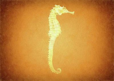 Vintage Seahorse Poster