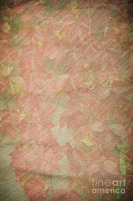 Vintage Silk Cotton Leaves Texture Poster by Arletta Cwalina