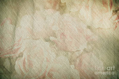 Vintage Silk Cotton Roses Texture Poster by Arletta Cwalina
