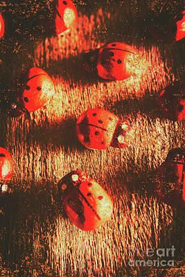 Vintage Wooden Ladybugs Poster