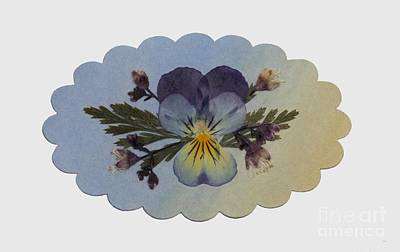 Viola Pressed Flower Arrangement Poster