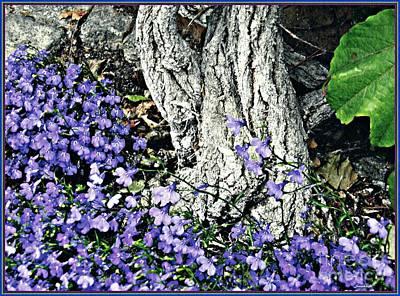 Violets At My Feet Poster by Sarah Loft