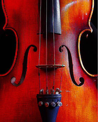 Poster featuring the photograph Violin # 2 by Jim Mathis
