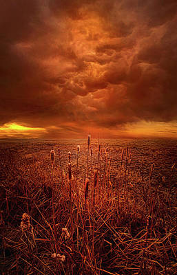 Vision Softly Speaking Poster by Phil Koch