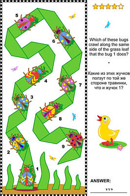 Visual Puzzle With Beetles And Bugs Poster by Natalia Ratselmeister