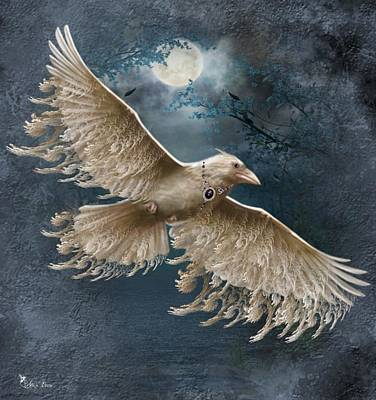 Viva The White Raven  Poster