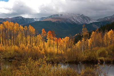 Vivid Autumn Aspen And Mountain Landscape Poster