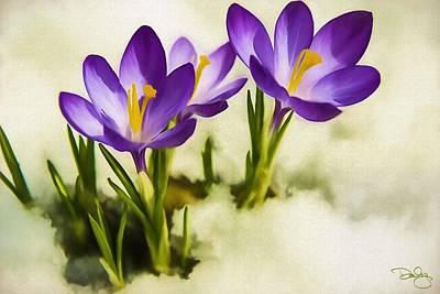Vivid Spring Poster