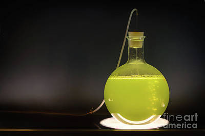 Volumetric Flask With Green Liquid Chemical Experiment Poster by Sasha Samardzija