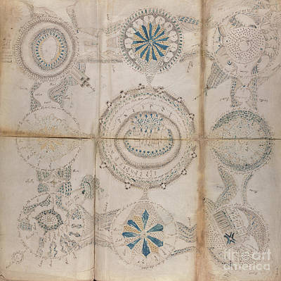 Voynich Astro 3x3 Poster