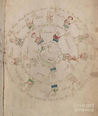 Voynich Manuscript Astro Aries Poster
