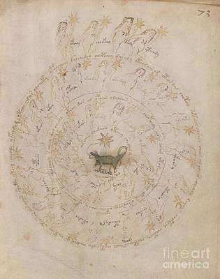 Voynich Manuscript Astro Scorpio Poster