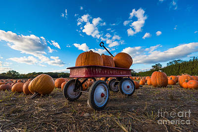 Wagon At The Pumpkin Patch Poster