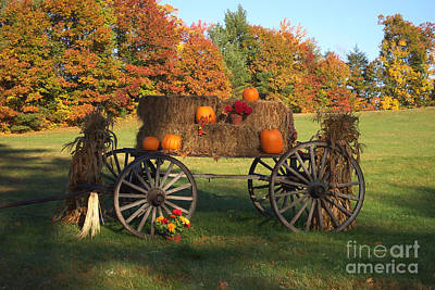 Wagon Sunny Fall Day Poster