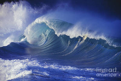 Waimea Shorebreak Poster by Vince Cavataio - Printscapes
