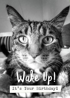 Wake Up It's Your Birthday Cat- Art By Linda Woods Poster by Linda Woods