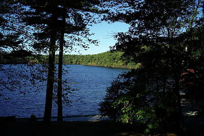 Walden Pond End Of Summer Poster