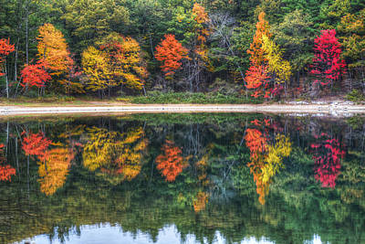 Walden Pond Fall Foliage Concord Ma Reflection Poster by Toby McGuire