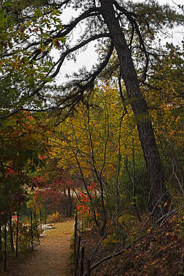 Walden Pond Path Into The Forest 2 Poster by Toby McGuire