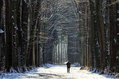 Walk The Dog Poster by Martin Podt