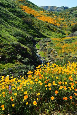 Walker Canyon Vista Poster by Glenn McCarthy Art and Photography