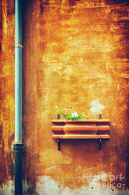 Poster featuring the photograph Wall Gutter Vase by Silvia Ganora