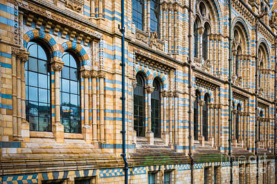 Wall Of Natural History Museum In London Poster by Inge Johnsson
